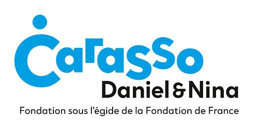 Foundation Guide - Daniel and Nina Carasso Foundation