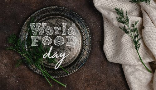 Foundation Guide - World Food Day